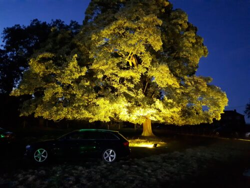 Outdoor lighting ideas for events at South Ormsby Estate in Lincolnshire